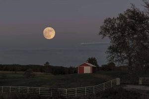 A recent photo by Linda of the Super Moon of November 2016