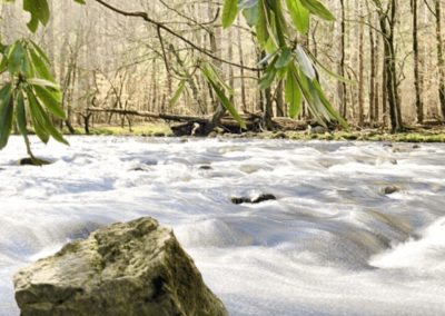 The Gatlinburg Trail in Great Smoky Mountains National Park