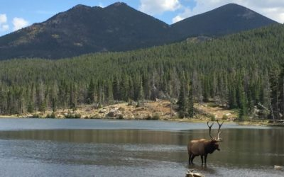 Rocky Mountain National Park & Moraine Park Campground