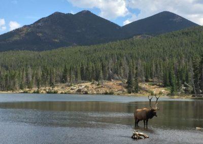 Rocky Mountain National Park & Moraine Park Campground