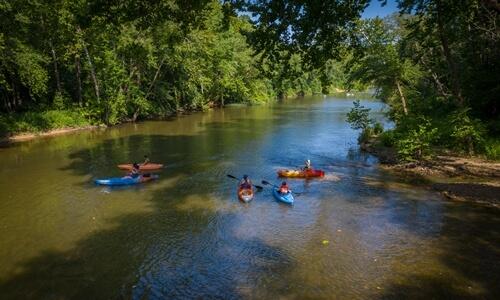 Float the Gasconade River – Pulaski County, Missouri