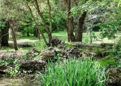 Bernheim Arboretum and Research Forest