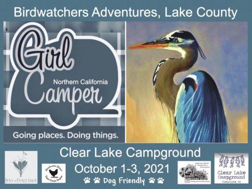 Bird Watching Adventures, Clear Lake, CA