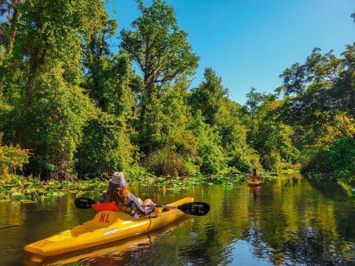 Tubing and Kayaking in Hot Hot Hot August! – Apopka, Florida